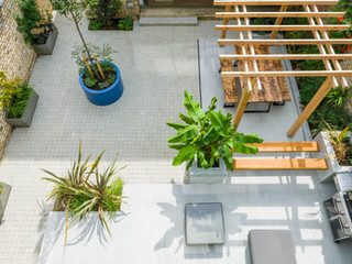 Overhead view of a modern landscaped courtyard garden in central cambridge