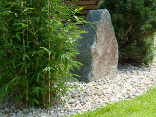 Bamboo and landscaping rock in a modern japanese garden in cambridge UK