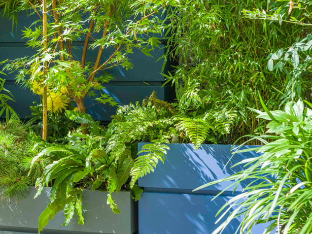 Stacked modular planters with bamboos and other modern planting as part of a landscape design in cambridge