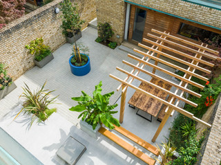 View of a cambridge courtyard garden with modern block paving and exotic planting scheme