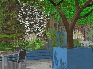 computer aided design image of a contemporary courtyard garden design in cambridge