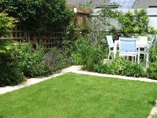 Modern  landescaped family garden