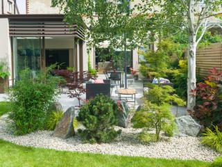 Landscaper designer planting scheme in cambridge