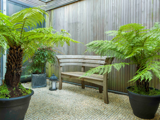 Shady courtyard garden in cambridge with cedar cladding, tree ferns and metal grating floor infilled with gravel