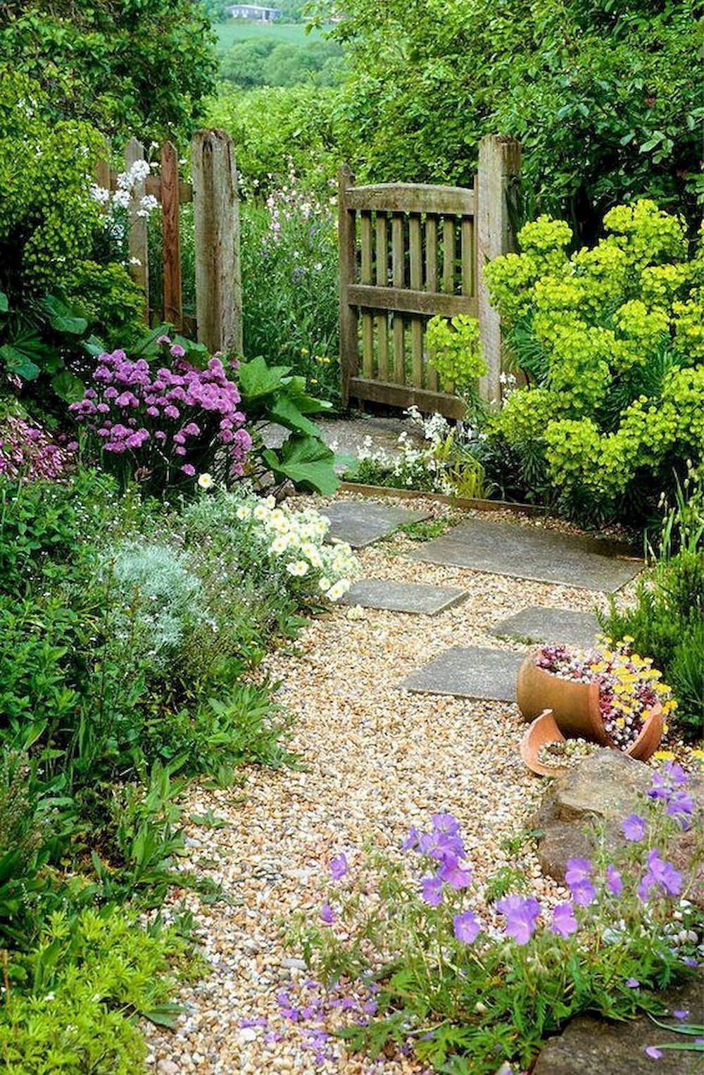 Traditional cottage garden with an open wooden gate, gravel path and flower bedsgate
