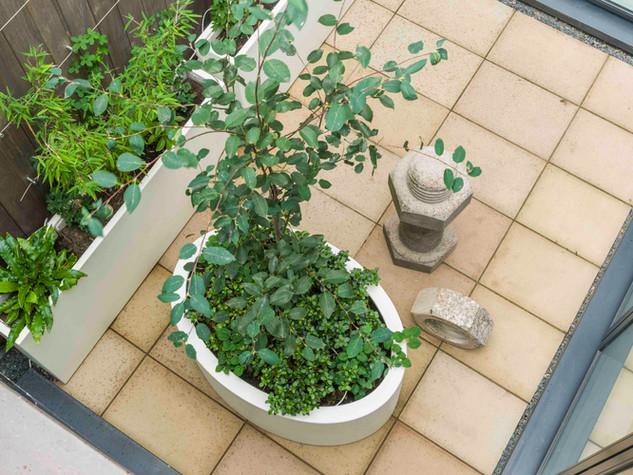 Courtyard garden design in cambridge with sawn sandstone paving and contemporary  white fibreglass planters