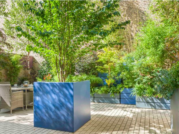 Vibrant courtyard garden