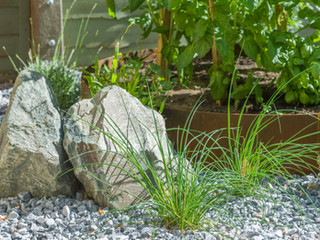 Granite landdscaping boulders, planting and a raised bed made of corten steel in a modern gravel garden in cambridge
