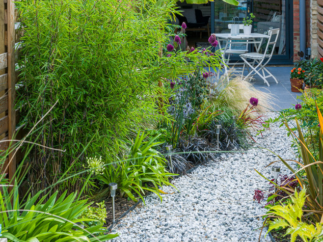 A winding gravel path with bamboo and tropical style planting in a modern garden design