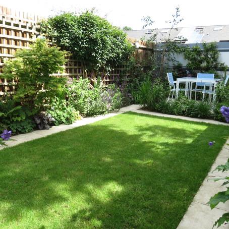 What Does a Garden Designer Do?