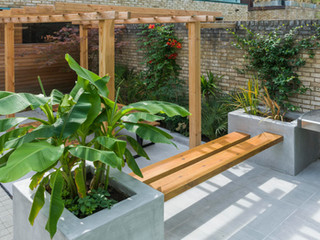 Polished concrete rendered raised beds with tropical planting in a contemporary courtyard garden in cambridge