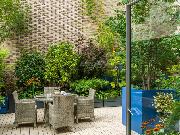 View out of double doors onto a mordern courtyard garden design. Stacked rectangular planters create a multi level effect with tall bamboos and birch trees.