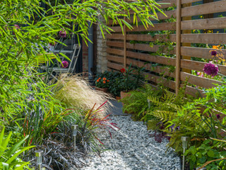 A patio partially hidden by bamboo and colourful modern planting