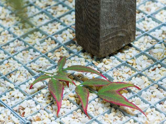 Leaf on metal grate with gravel infill