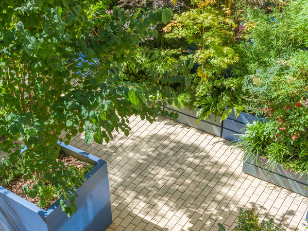 Top view of a large modern courtyard created by a garden designer using fibregalss planters trees and bamboo