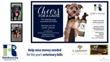 Rylie's Rescue - Nonprofit Animal Rescue Service Fundraiser