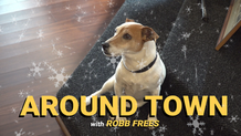 Around Town with Robb Frees EP7 - Weitzenkorns