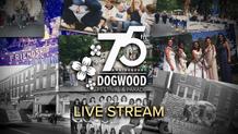 75th Annual Dogwood Parade