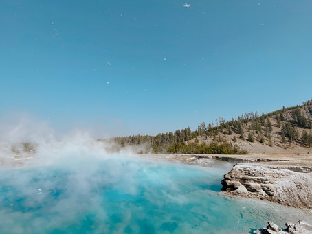 yellowstone: fall guide 2020