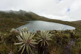 2016-06-18 Laguna de Siecha Guasca JVD (