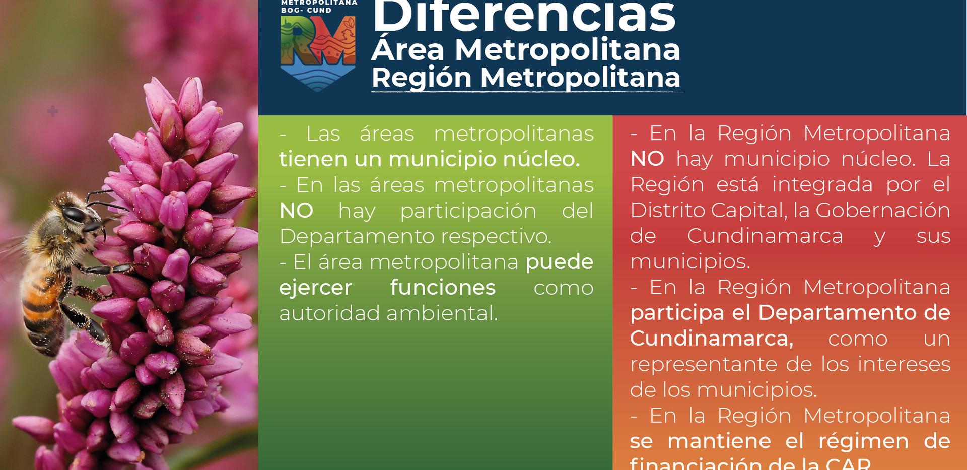 Diferencias Área Metropolitana - Región Metropolitana