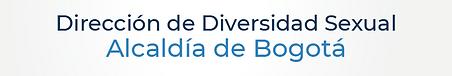 Dirección de Diversidad Sexual-24.png