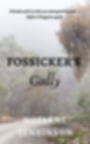 Fossicker's Gully cover.jpg