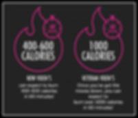 Vixen-calories-600x511.jpg