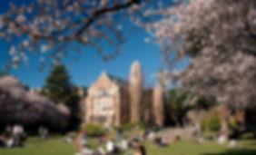 University-of-Washington-3.jpg