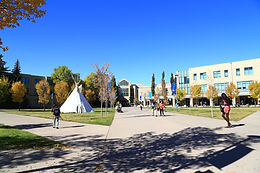Mount Royal University (皇家山大學)