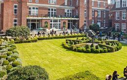 Regent*s University London : Internexus (倫敦攝政大學)