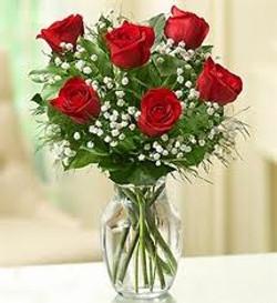 Half Dozen Rose Vase