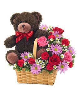 Fresh Basket & Bear