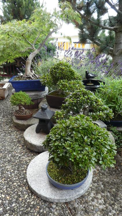 Visite du jardin de Jacques