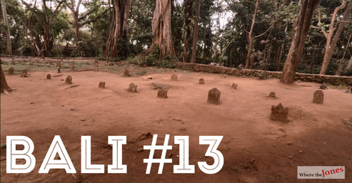 Click here to watch: BALI 🐵UBUD MONKEY FOREST