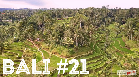 Click here to watch: Bali 🌾Tegallalang Rice Terraces ☀️