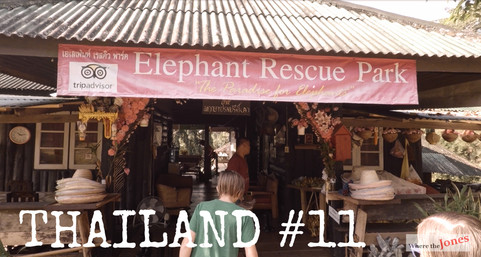 """Click to watch: 100 Chiang Mai 🐘 Elephant """"Parks"""" ❤️ Why we chose this one (2018)"""