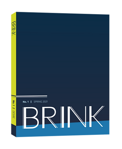 brink_cover_3_4_g.png