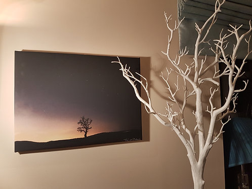 Handmade Canvas Print - The Lone Tree At Night, Shropshire