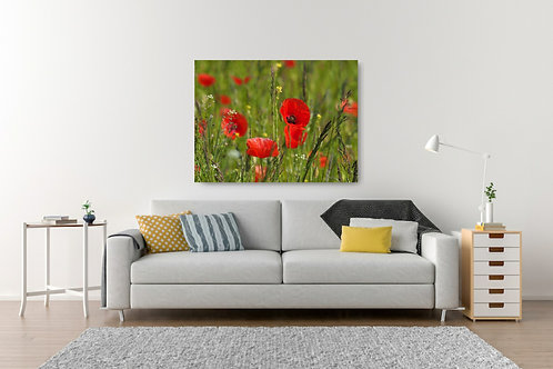 Handmade Canvas Print - Poppies