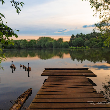 Apley Lake, Summer P6050133-2.jpg