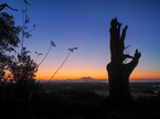 Haughmond Hill looking towards Welshpool at Sunset