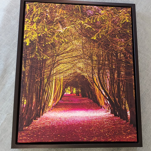 Yew Tree Arch Canvas in Stunning Floating Frame