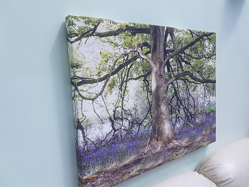 Handmade Canvas Print - Bluebells Under The Tree