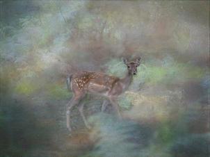 WI07 Woodland Deer.jpg
