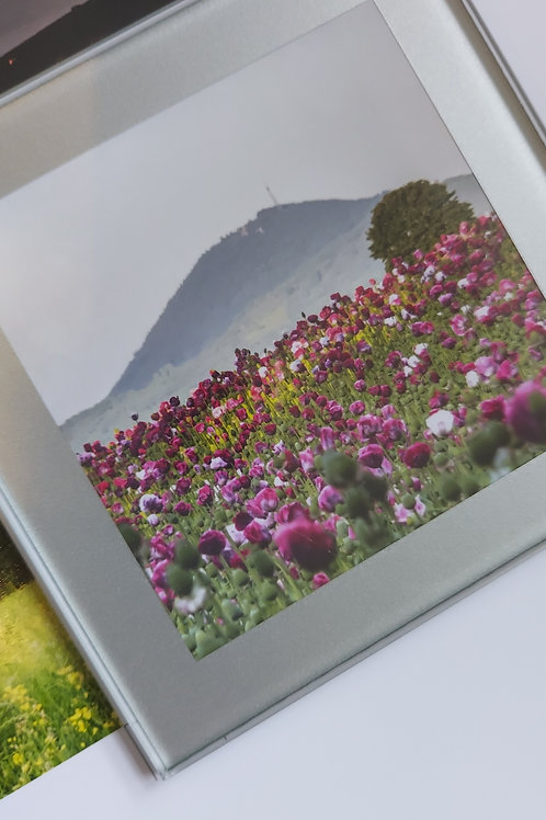 Glass Coaster- Wrekin With Poppy Fields