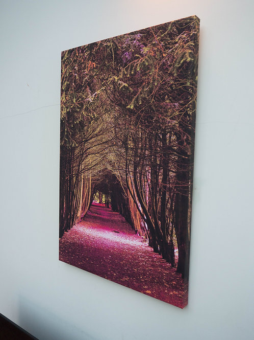 A1 Handmade Canvas - Yew Tree Arch