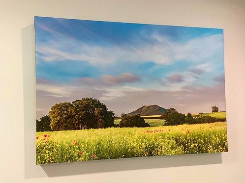 Wrekin - 'Summer Fields'