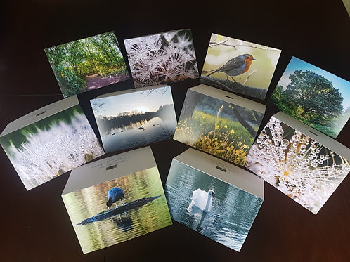 Pack of 10 Mixed Dothill Nature Reserve Greetings Cards
