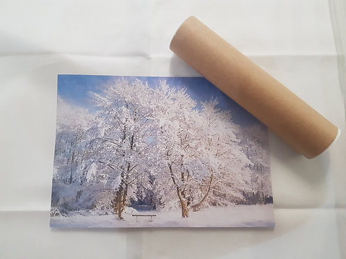 Snow Trees A4 Poster